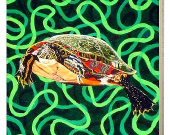 Illinois Painted Turtle Panel