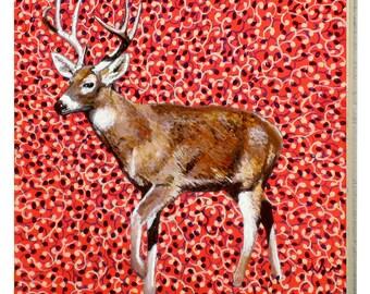 Ohio White Tailed Deer Panel