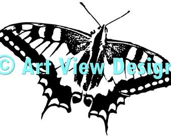 Pattern Butterfly 1©