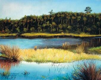 Flagler Beach Marsh