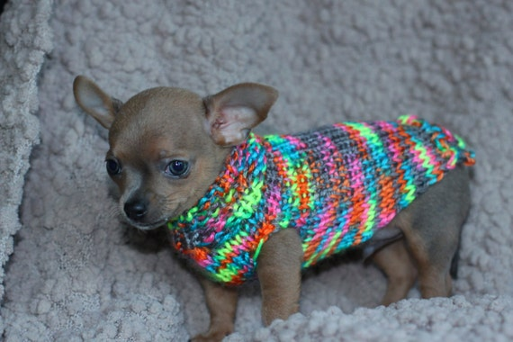 meet my new puppy collection chihuahua sweater chihuahua. Black Bedroom Furniture Sets. Home Design Ideas