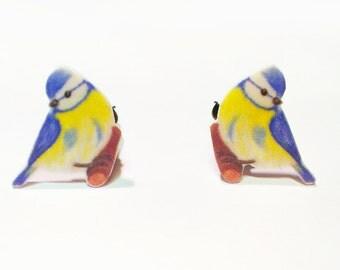 Earrings blue tit
