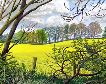 Spring Fields, North Yorkshire, Limited Edition Giclée print from an original ipad drawing