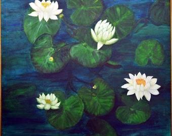 Waterlilies for Dozer