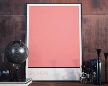 Salmon Print - Salmon Color Art - Colour Block Art - Minimalist Art Print - Modern Wall Art - Modernism - Contemporary Print