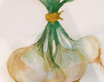 Watercolor Onions -- Original