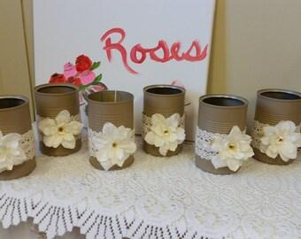Decorative Tin Cans