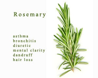 10 ml Rosemary Essential Oil
