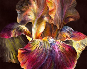 Flower on a black background, beautiful flower, bright flower,painting, drawing,picture