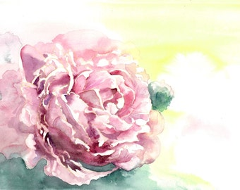 Print Of A  Watercolour Of A Pink Peony Flower