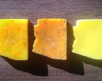 Arizona Gift Soap: Summer Soap, Goat Milk Soap, Glycerin Soap, Handmade Arizona Soap Homemade Arizona Soap Arizona Citrus Soap Arizona Gifts