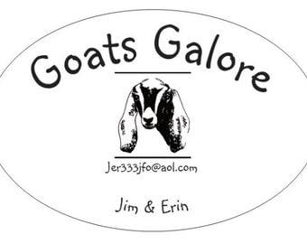 Goat milk soap (all natural)