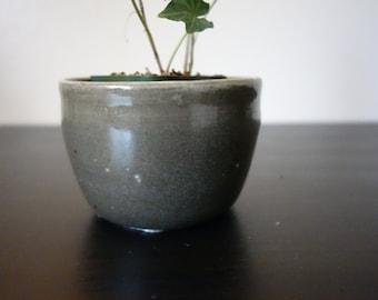 Small Black Pot