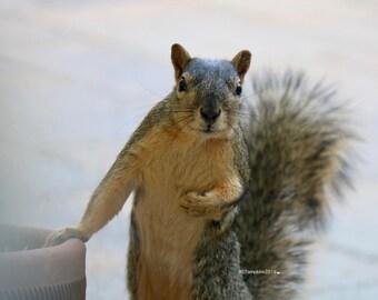 Excuse me?  A little service, please!