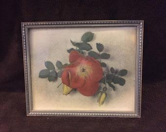 Antique art, Flower art, Shabby chic, The Corwin Studio Grand junction Colorado