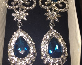 Gorgeous Large Blue And White Earrings