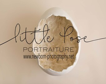 Little Pose ~ Egg Newborn Digital Background High Res jpg file