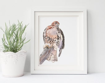 Red Tailed Hawk print RTH130DL, hawk painting, printable wall art, brown and white wall art, bird print download, hawk download