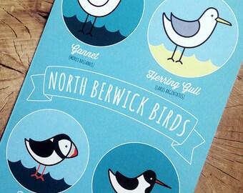 North Berwick Birds Card