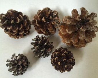 Silver Dusted Pinecones