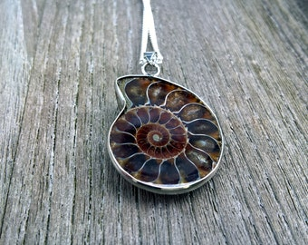 Ammonite,Fossil,genuine Ammonite,fossil gemstone necklace,ammonit,925 Sterling Silver