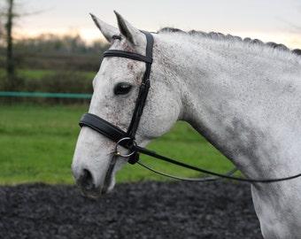 Beautiful Horse Comfort Bridle