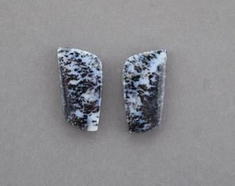 Dendrite Opal Cabochon Pair
