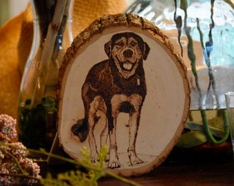 Pet Portraits on wood - Wood Burning pyrography unique art for dog, cats, animals - Free Shipping