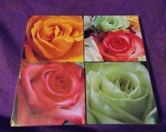 Rose photo coasters