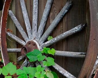 Photo Print - Rusty Metal - Wheel - Antique Wheels - Barnyard - Wagon Wheel