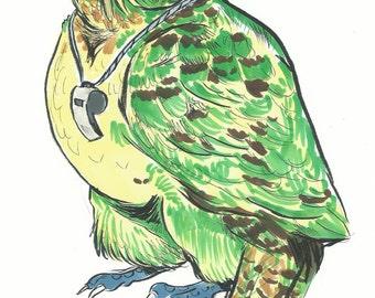 Kakapo Illustration
