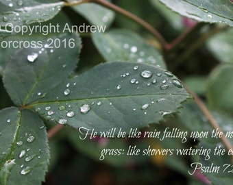 Water Droplet Picture with Bible Verse