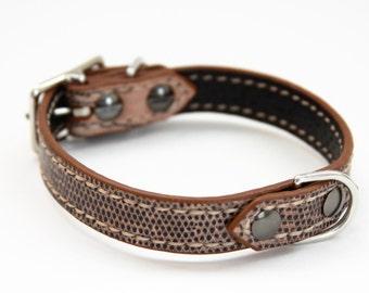 Dog Collar Genuine Lizard Brown