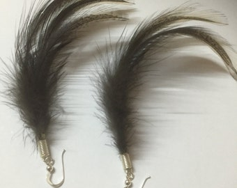 Silky Rooster Feather Earings