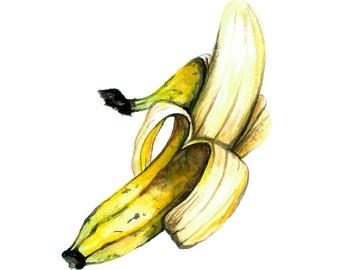 Banana Watercolor Print