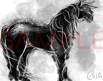 Black horse - A3 print