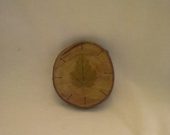 Red Tip Wooden Plaque with leaf