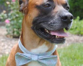 Handmade Bows for your cat or dog