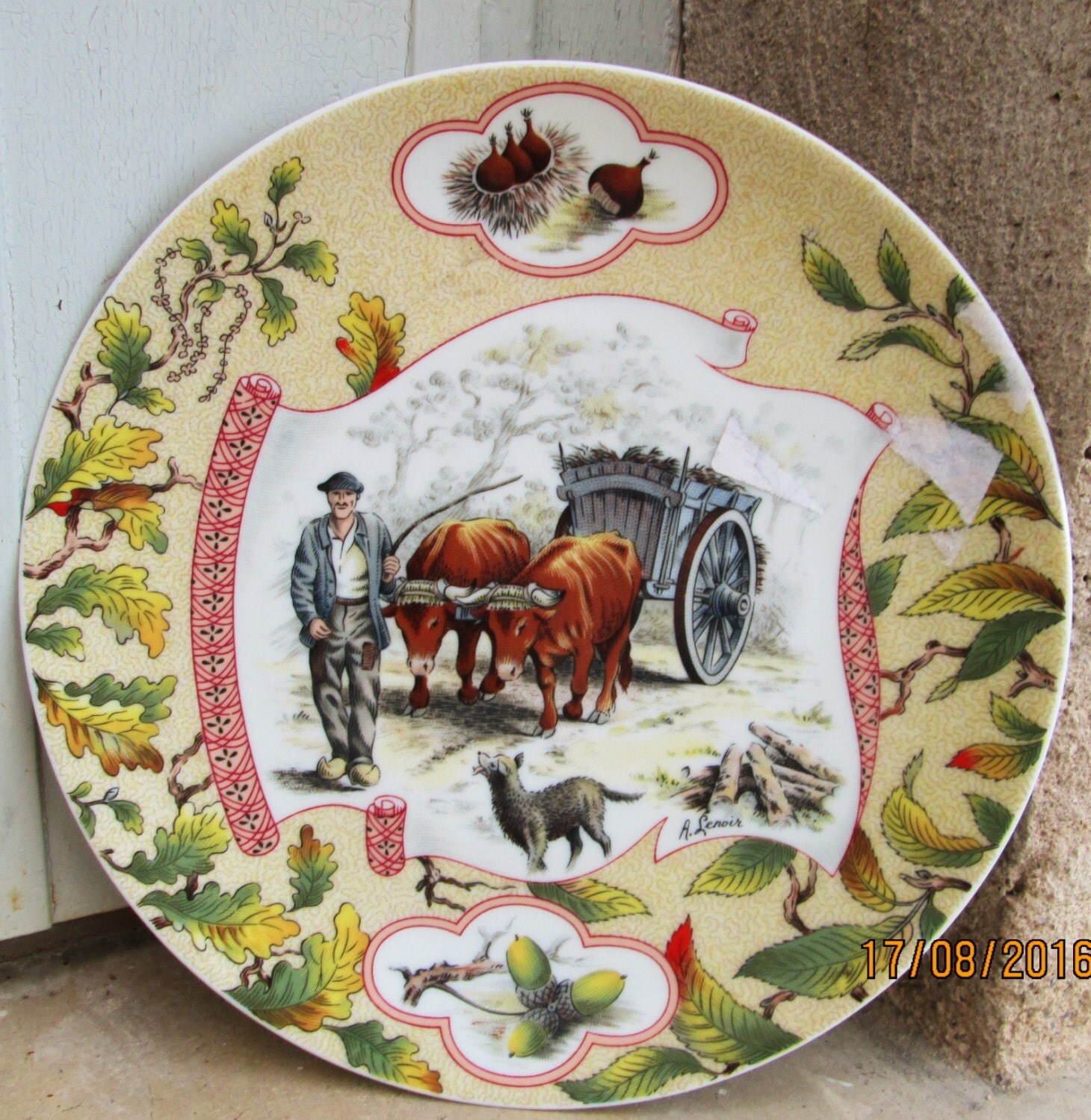 Beautiful Limoges Plate French Wall Decor Decorative Wall