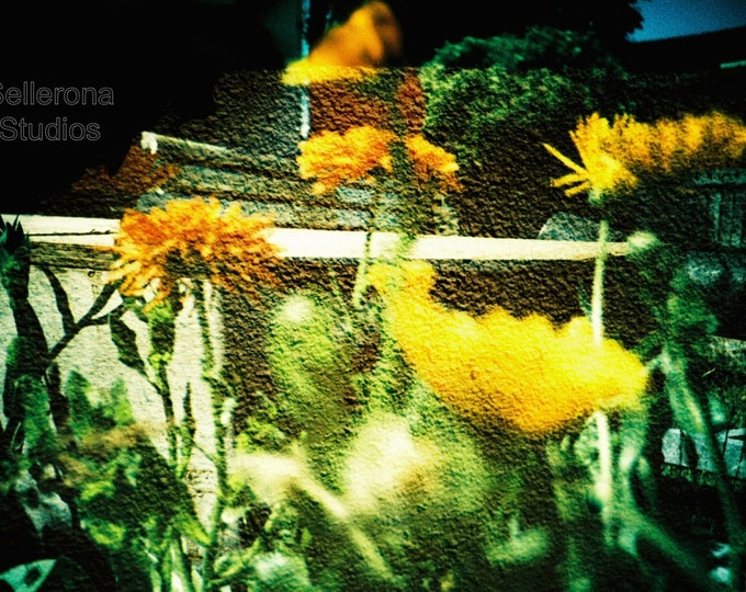Featured listing image: Yellow Flowers Double Exposure - Giclee Print - Scandinavian Photography
