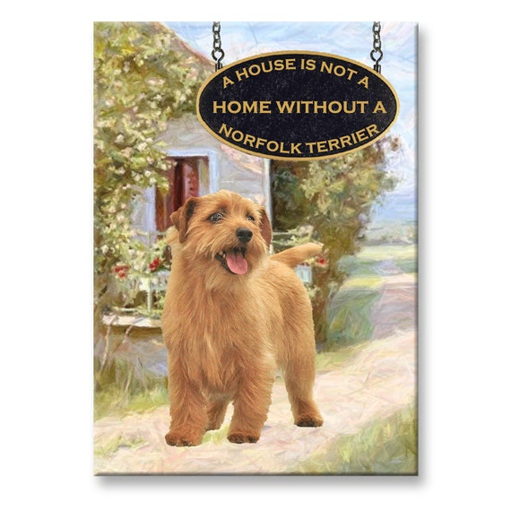 Norfolk Terrier a House is Not a Home Fridge Magnet