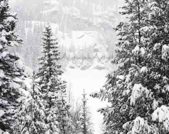 PRINT ENLARGEMENT- Magical Wintertime