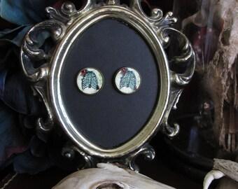 Macabre Earrings handmade vintage brass finish pierced steampunk Gothic curios oddities anatomy bones skeleton ribs 16mm