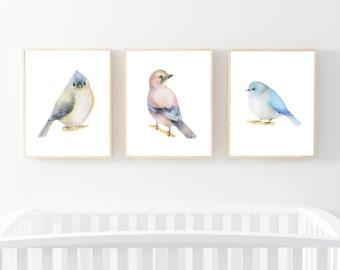 "Bird Print set of 3 8x10"" Watercolour, Printable Art, Nursery Print, Watercolour Art, Bird Illustration, Nursery Decor, Bird Baby Gift Ideas"