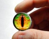 Glass Eyes -  Sunshine Daydream Dragon Glass Eyes Glass Taxidermy Doll Eyes Cabochons - Pair or Single - You Choose Size