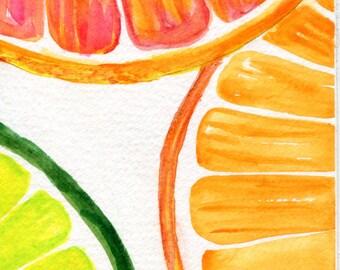 Citrus Watercolor Painting Grapefruit, Orange, Limes slices original, Watercolor Painting,  Fruit art 4 x 6 kitchen decor, SharonFosterArt