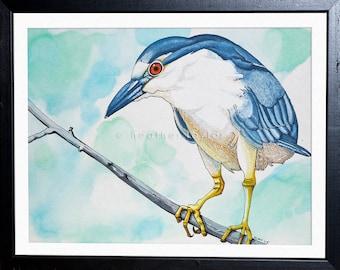 Black-Crowned Night Heron - Original Pen & Ink
