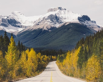 Mountain Art, Fall Foliage, Canadian Fall Photography, Alberta Landscape Photography, Rustic Autumn Decor, Open Road - Into the Wild