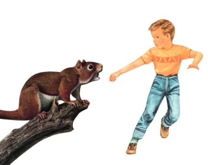 Funny Squirrel Art Collage, Humorous Animal Artwork