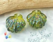 Lampwork Beads Sea Kelp Beachcomber Shell